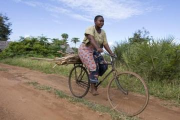 Women with firewood on a bicycle